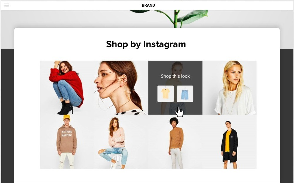 shobabble instagram posts on website