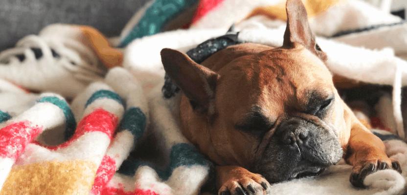 Print-on-demand-blanket-review-Printify