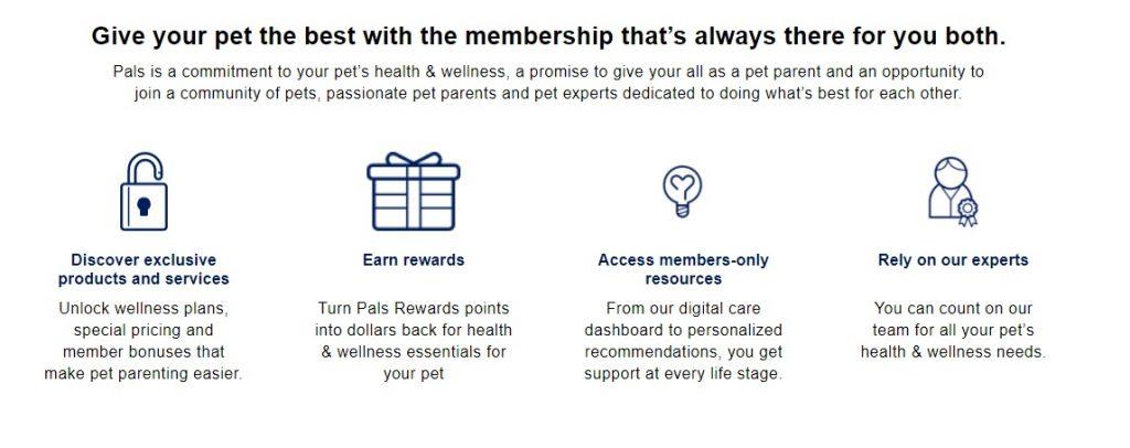 petco reward programs